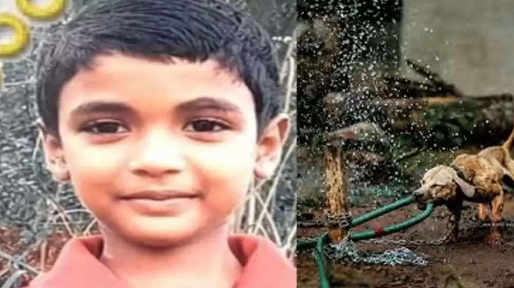 കാസർകോട് പേ വിഷബാധയേറ്റ് ഏഴ് വയസുകാരൻ മരിച്ചു
